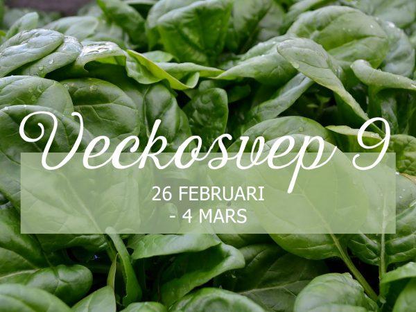 "Bild av spenat med texten ""Veckosvep 9 26 februari - 4 mars"" på."