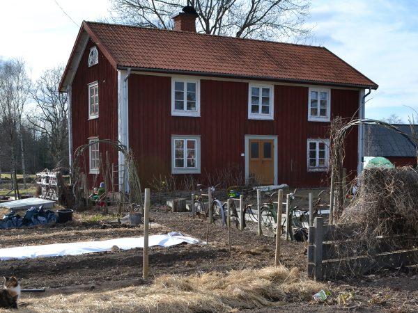 En vårdag med blå himmel syns Saras röda trähus bakom ett antal prydliga, men kala odlingsbäddar.