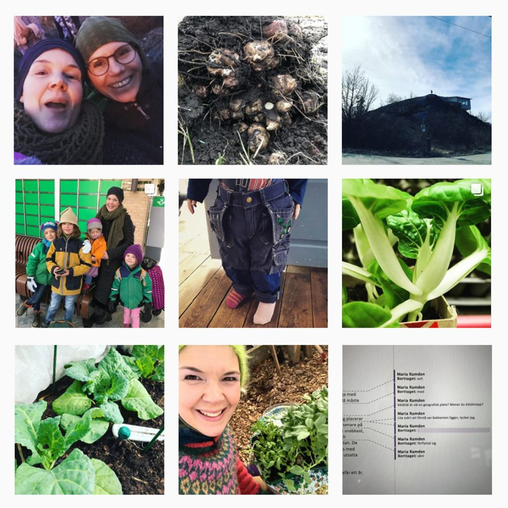 Ett collage av nio bilder från instagram.