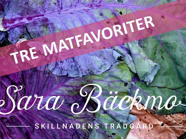 Bild på lilagrön kål med texten Tre matfavoriter, Sara Bäckmo, Skillnadens Trädgård