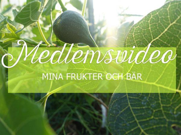 Medlemsvideo på sarabackmo.se i maj om frukt och bär.