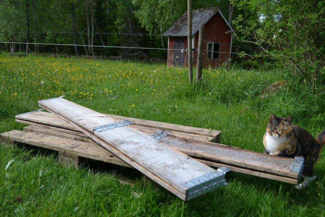 En lastpall med två ihopvikta pallkragar och en katt ovanpå.