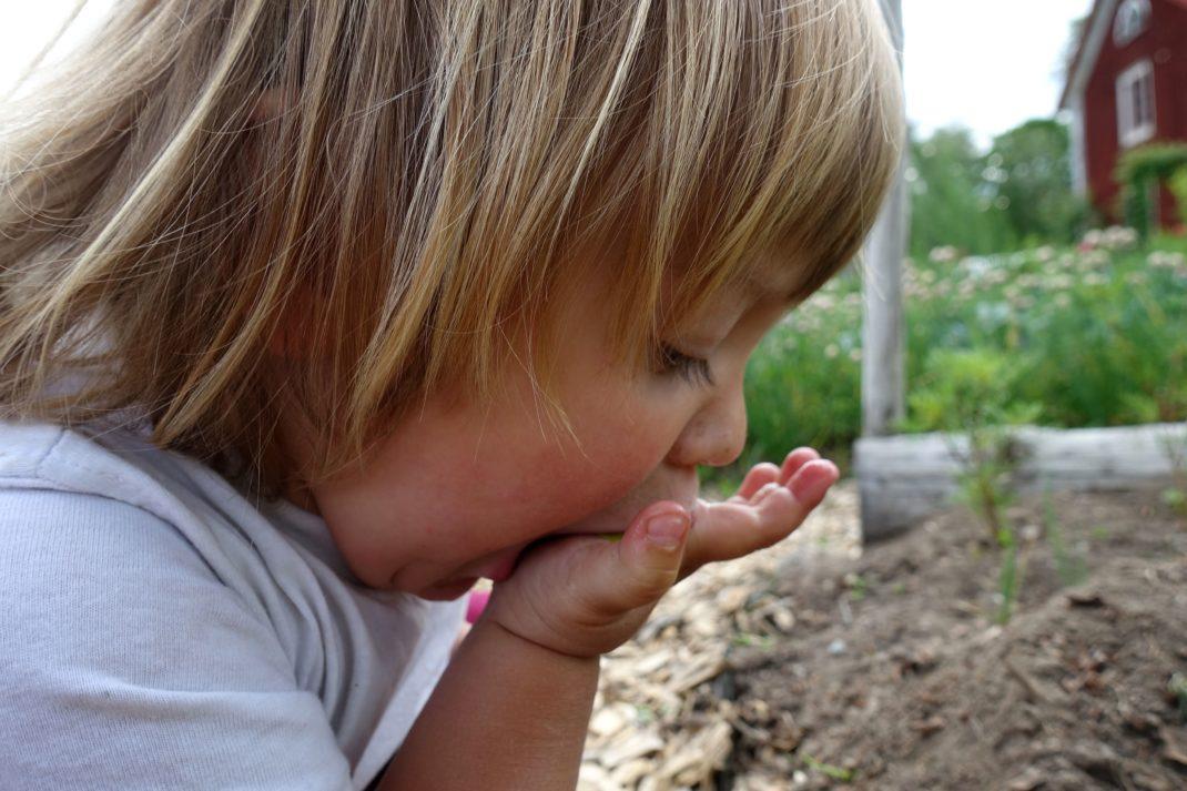 Ett litet barn trycker in grönt i munnen.