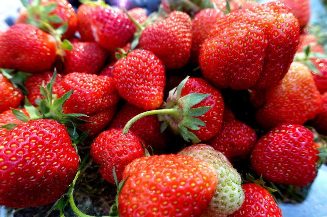 Närbild på läckra röda jordgubbar på ett fat.