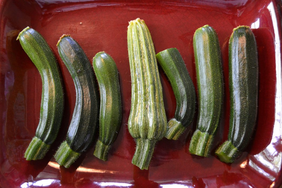 Små frukter av squash ligger på ett rött keramikfat.
