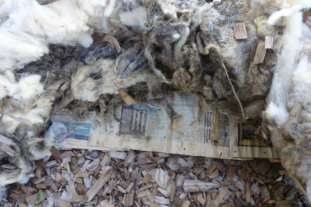 Här har jag lyft undan en bit av ullen för att visa tidningen under.
