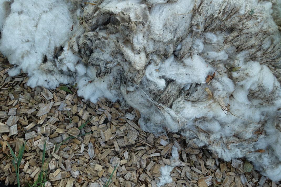 En bild sedd ovanifrån på flis till vänster och ull till höger.