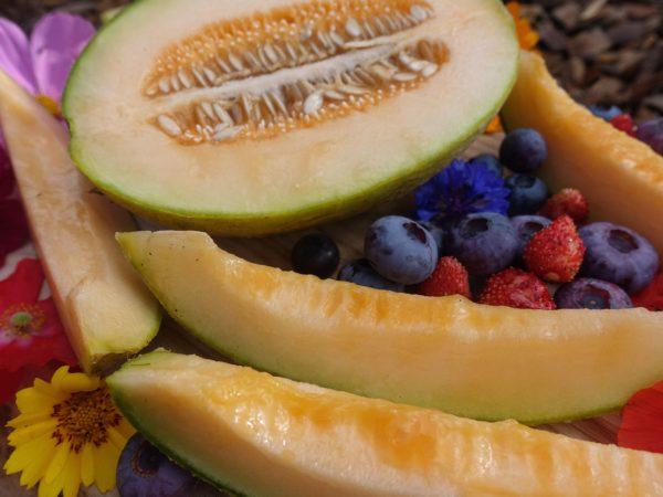 En tallrik med gyllengul melon, blåbär och röda smultron.