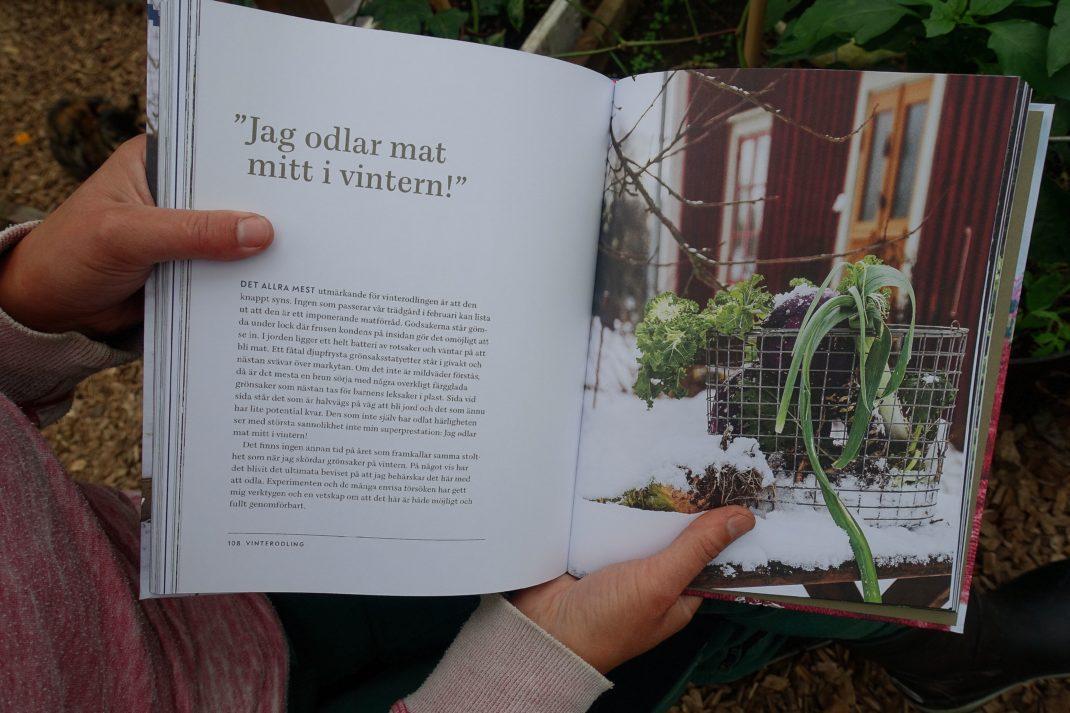 Ett uppslag från boken med textrubriken Jag odlar mat mitt i vintern.