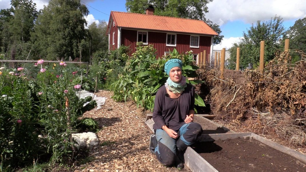 Sara Bäckmo sitter på en kant till en odlingsbädd i en somrig trädgård. Summer sowings, Sara in the kitchen garden, next to a growing bed.