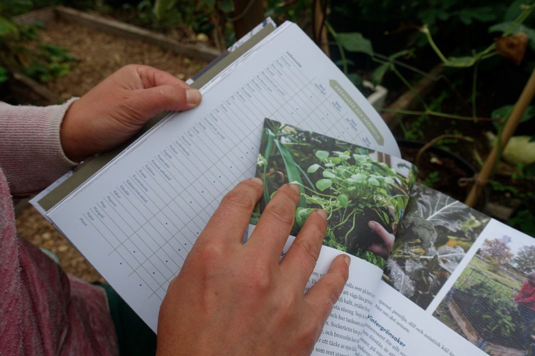 Sara visar ett uppslag ur boken.