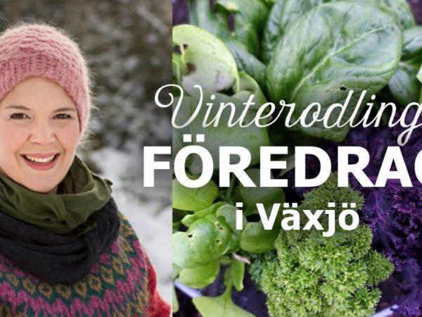 Bildcollage med Sara Bäckmo, gönsaker och textinfo om föredraget