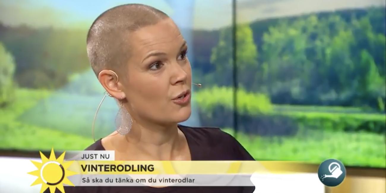Sara i närbild i Nyhetsmorgons tv-ruta.