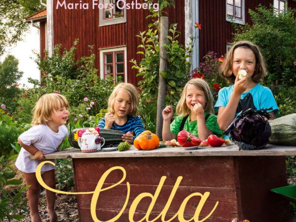 Ett bokomslag med fyra barn på framför ett rött hus på landet.