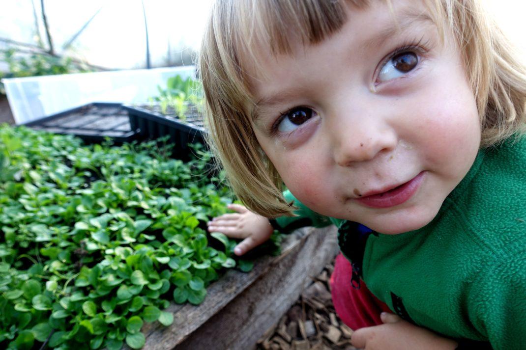 Ett litet barn med stora ögon sitter vid en grön matta av blad.