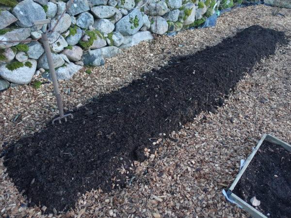 En prydlig jordbädd bland flisen i Saras trädgård.
