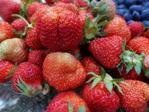 Närbild på färgglada jordgubbar på ett fat.