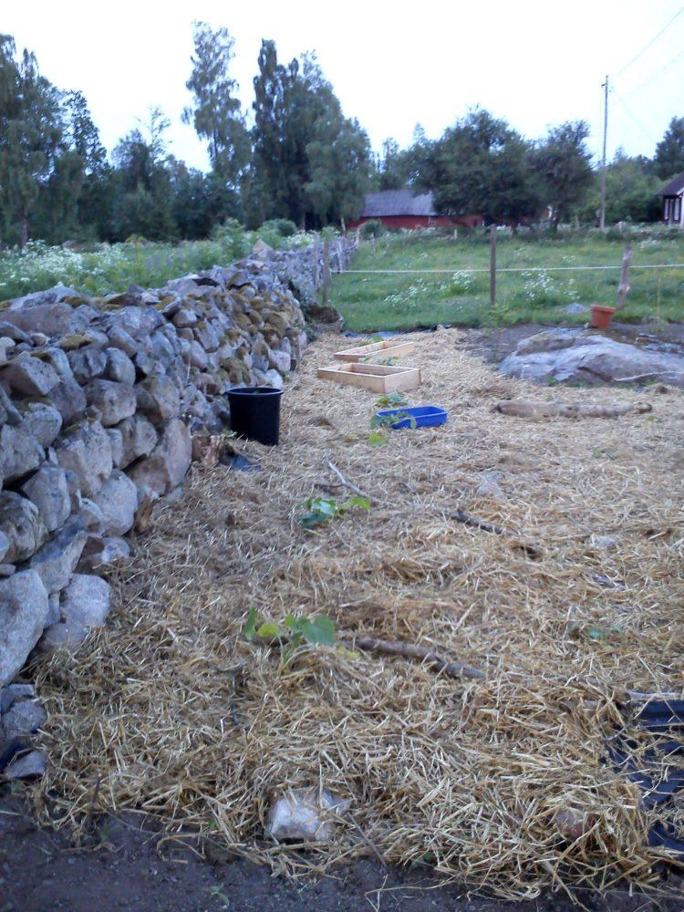 En yta täckt av halm alldeles bredvid stenmuren.