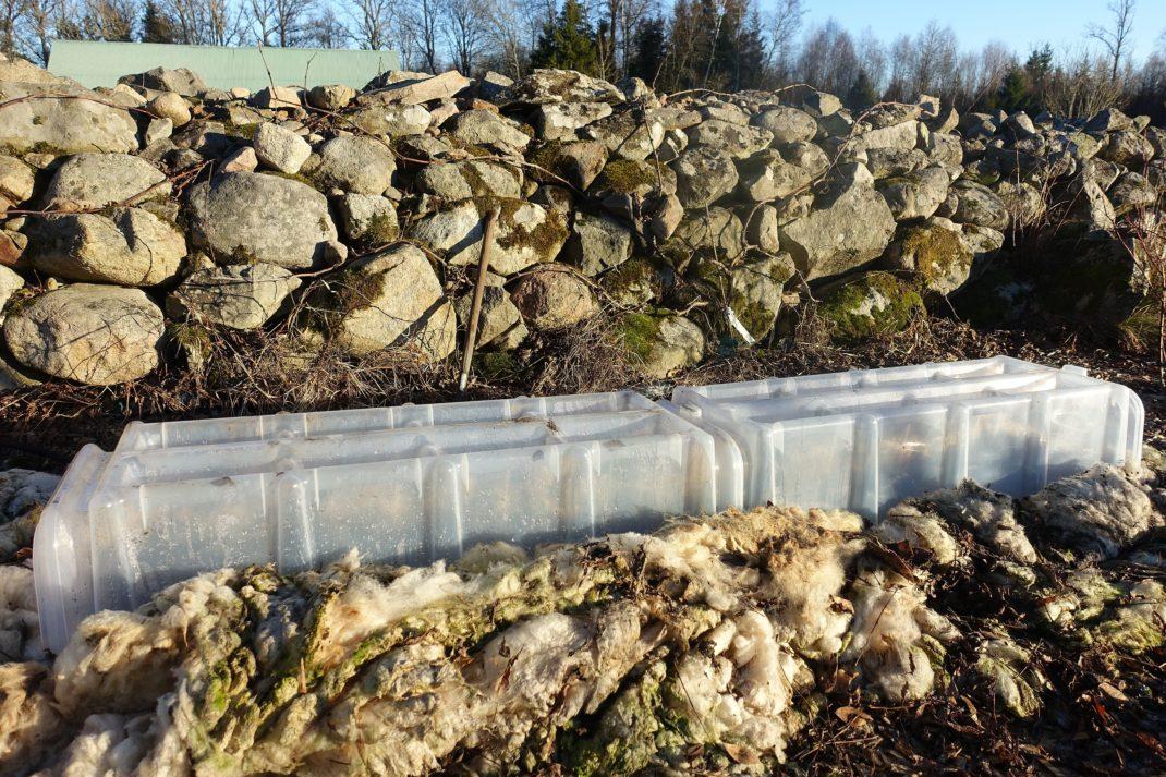 En odlingsbädd framför en stenmur.