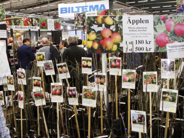 Blomqvists stora utbud av plantor.