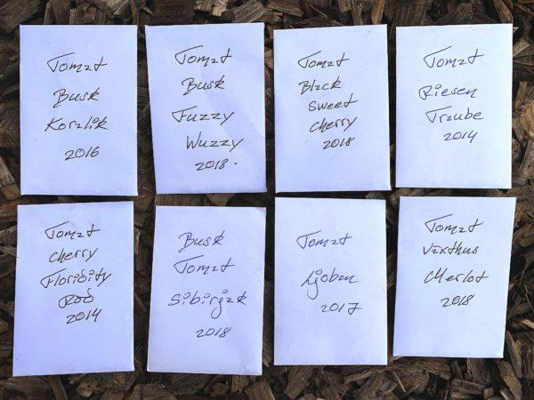 Åtta vita fröpåsar med handskriven text ligger på marken.