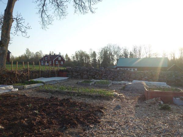 En härligt lugn köksträdgård i april.