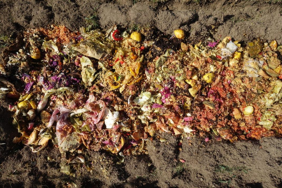 Färdig bokashi-kompost ligger i landet.
