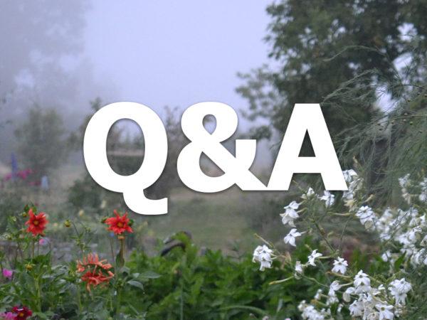 Frågestund som kommer livesändas 30 maj kl 19.00.