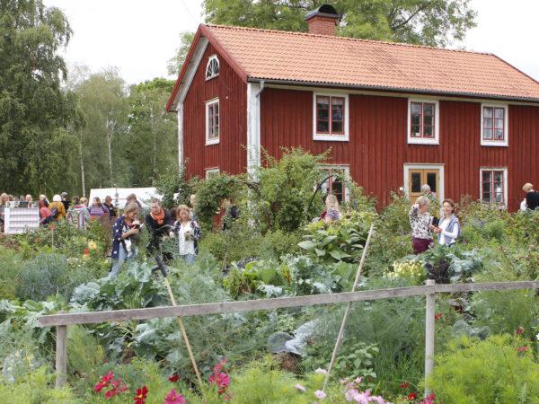 Skillnadens Trädgård med härliga medlemmar på studiebesök.