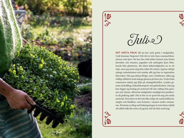 Ett bokuppslag med bild ur boken Odlingskalender, där Sara som håller ett tråg med gröna blad.