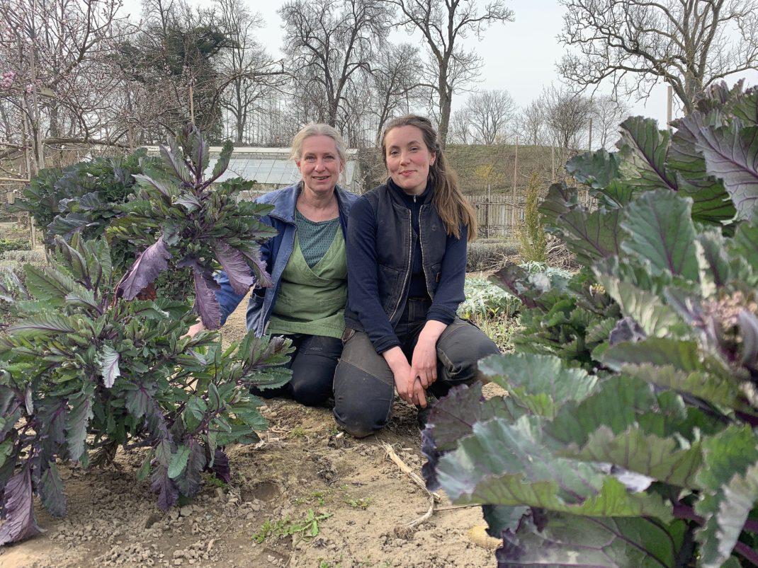 Två kvinnor, Marie och Tora, sitter i trädgården omgiven av hög kål.