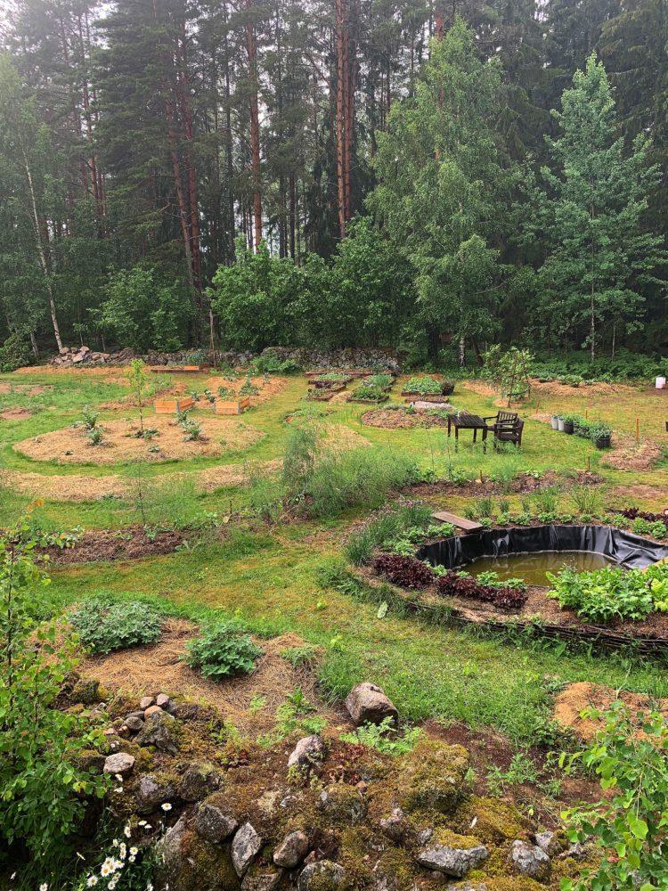 En prunkande köksträdgård.