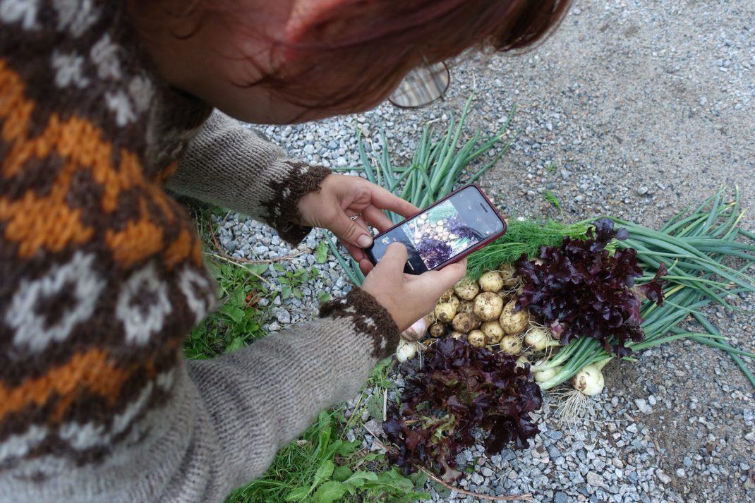 En kvinna står böjd över en hög med grönsaker och fotograferar den.