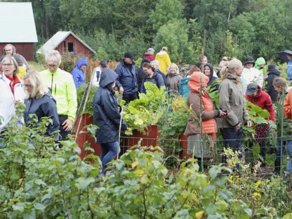 Massor av folk på besök i Skillnadens Trädgård!