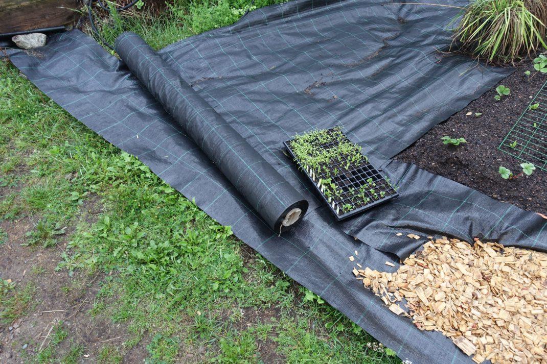 Svart markduk ligger på gräsmattan.