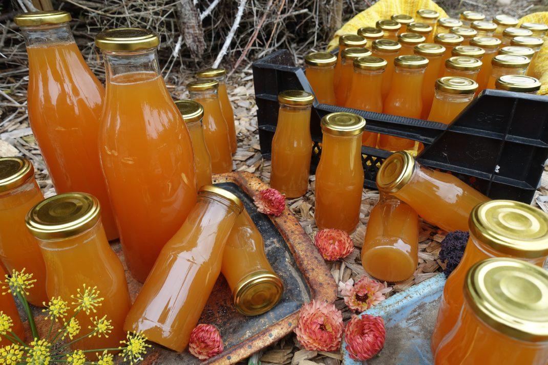 Små och stora flaskor med varmt orange must ligger och står på träflis utomhus.