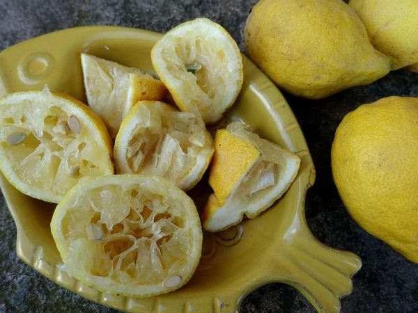 Ett fat med citronskal