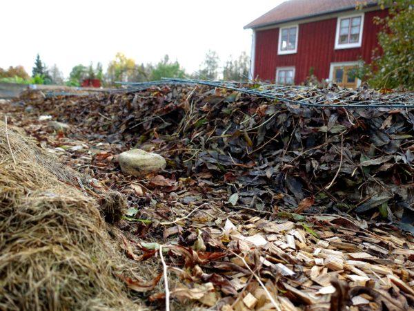 Bild på en odlingsbädd som täckts med löv.