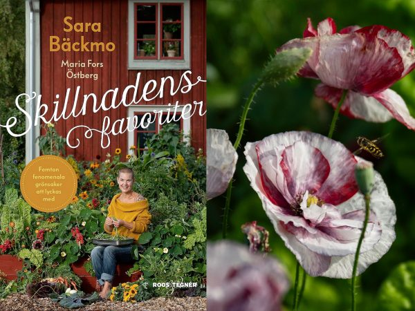 Montage av bokens omslag och en vacker vallmo.