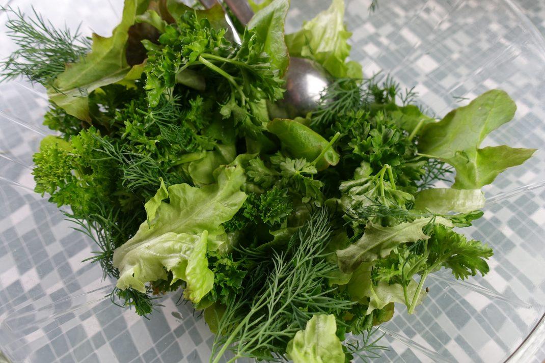 En salladsskål fylld av blandade grönsaker.