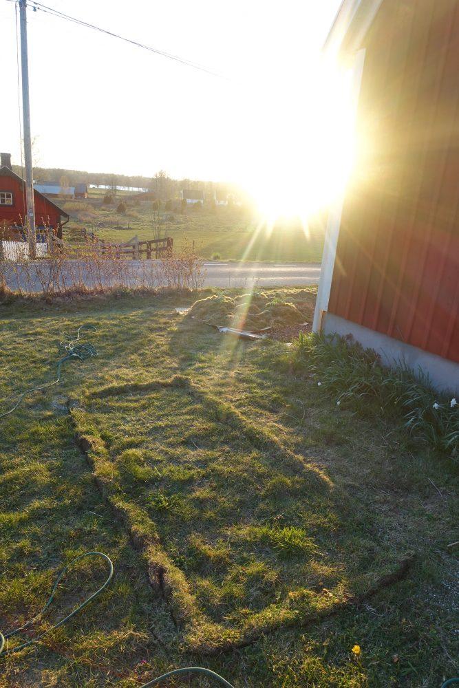 Kvällsljus i trädgården och en kant grävd runt en ny odlingsbädd.