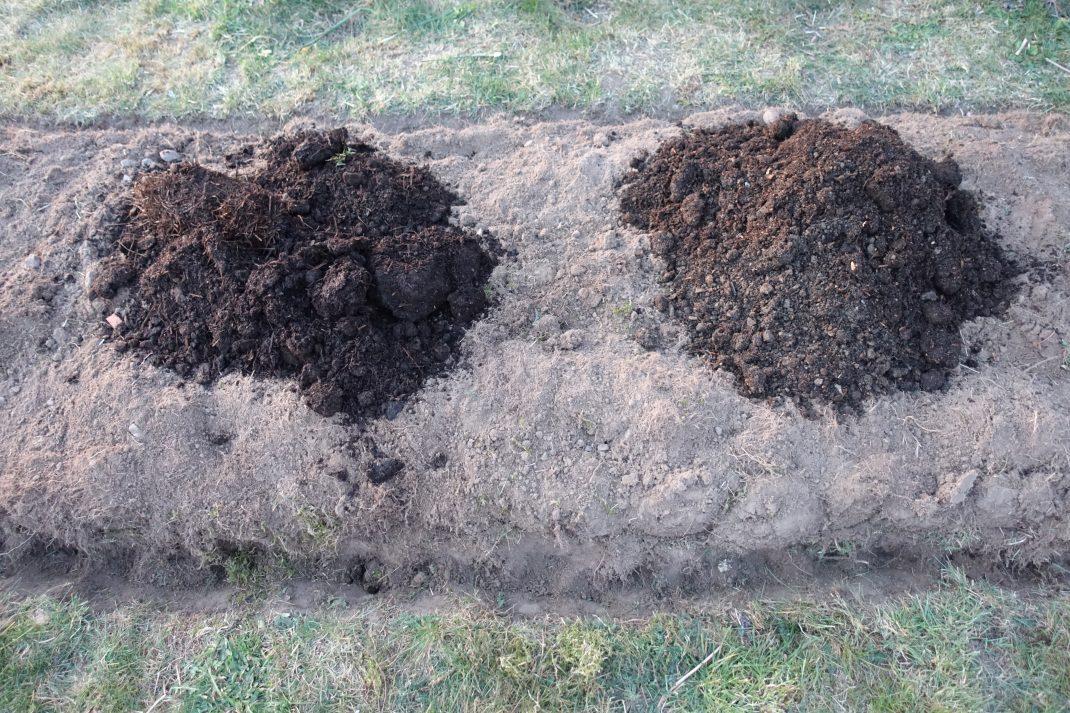 Två mörka högar med jordliknande material på odlingsbädden.