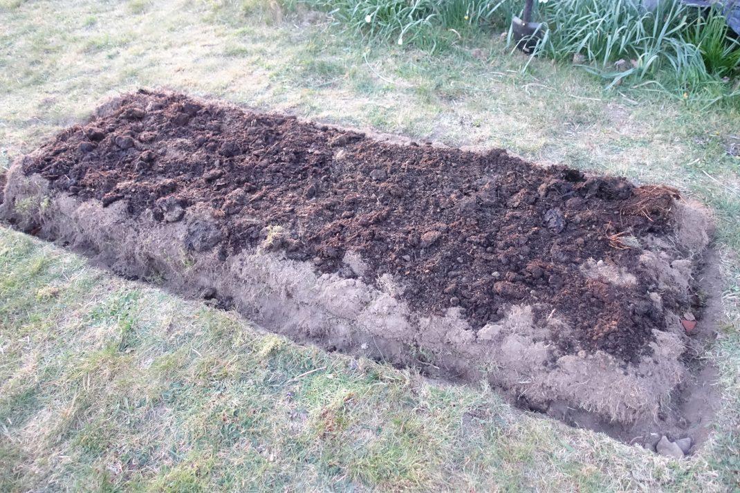 En gravliknande odlingsbädd i gräsmattan.