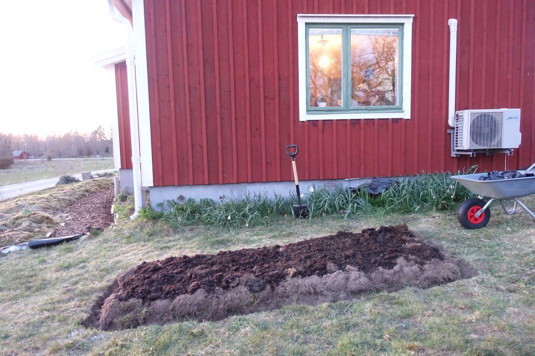 En upphöjd odlingsbädd täckt av jord vid gaveln på ett rött hus.