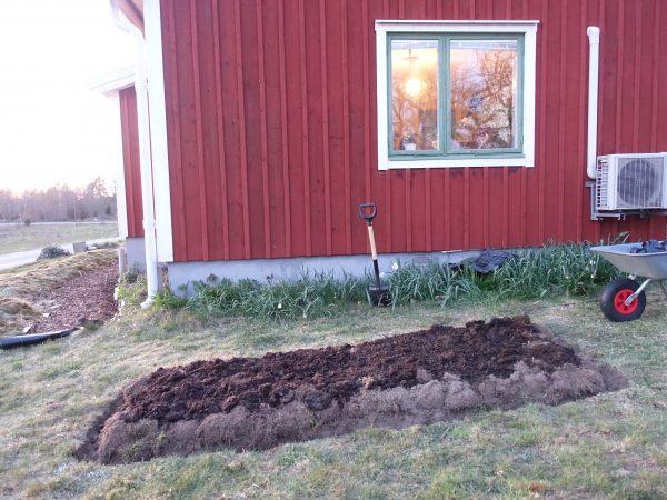 Bild på fasaden med gräsmatta nedanför och en odlingsbädd nyanlagd i marken.