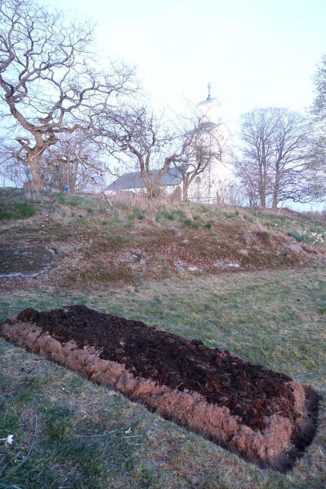 En odlingsbädd i en gräsmatta och en vit kyrka i bakgrunden.