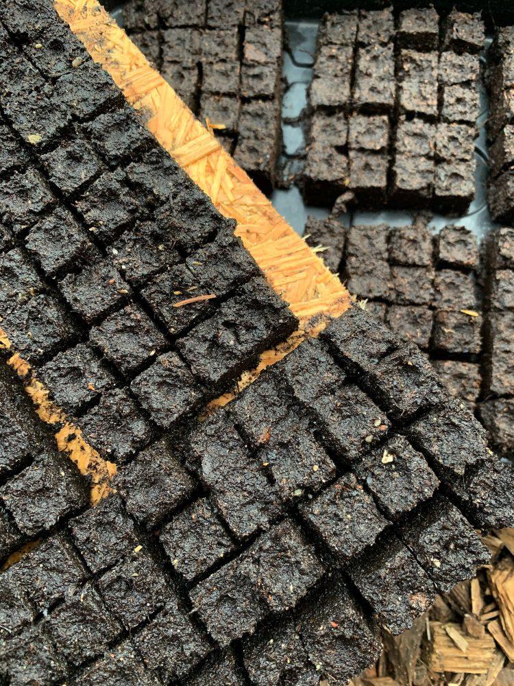 Närbild på tydliga små block av jord.
