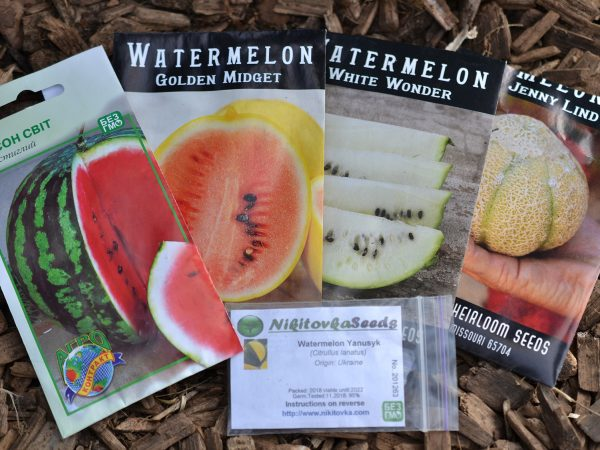 Fröpåsar med olika melonsorter