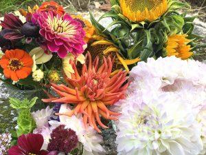 Vackra färgglada blommor i bukett.
