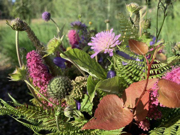 Bukett av blommor i lila och grönt.